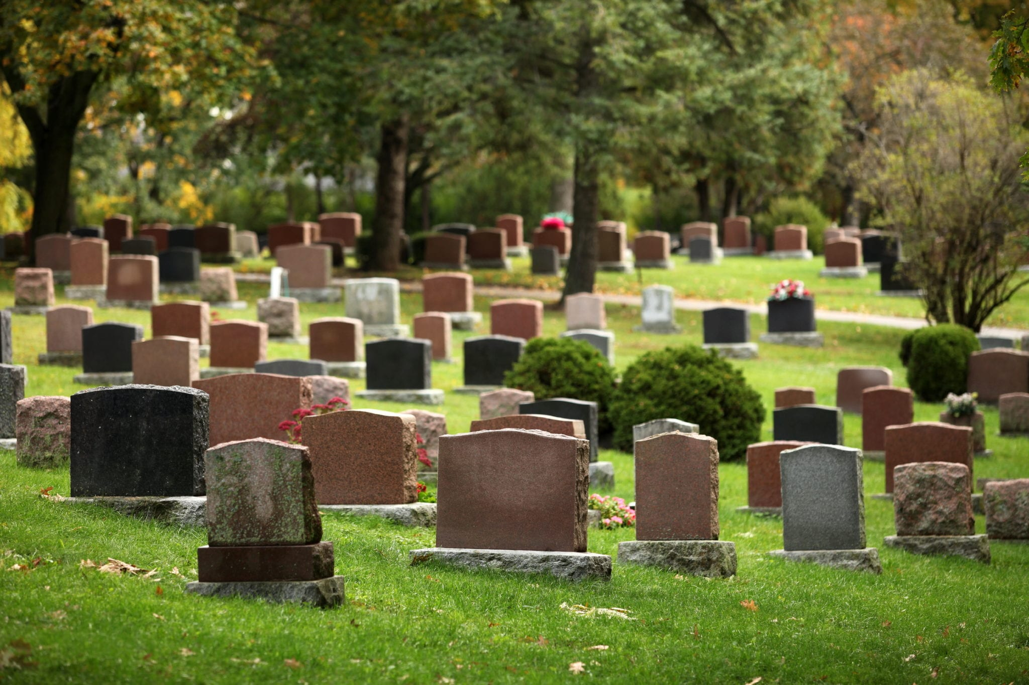 Who can Bring a Wrongful Death Claim?